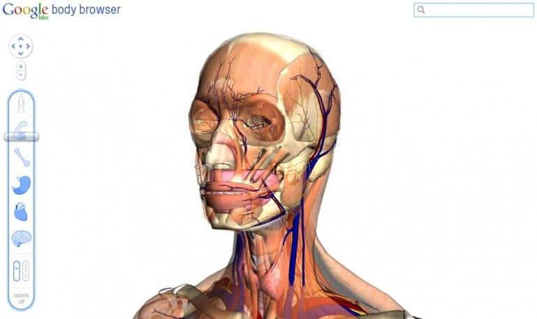 Body Browser: η ανατομία του ανθρώπινου σώματος από τη Google…