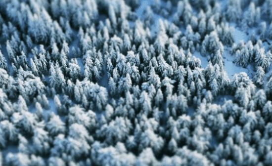 Whistler Blackcomb XXS: ένα καταπληκτικό βίντεο…