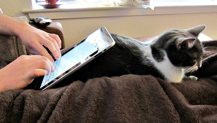 Φήμες για ένα 7.85″ iPad;