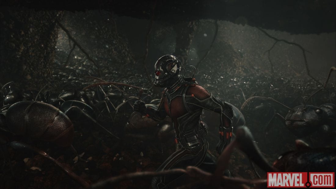 ANT-MAN Pictures 5