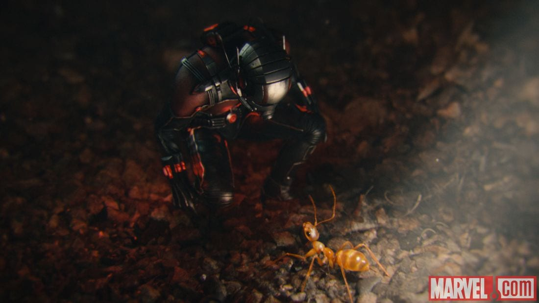 ANT-MAN Pictures 9