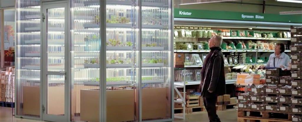 Ηi Tech λαχανόκηπος μέσα στο Supemarket