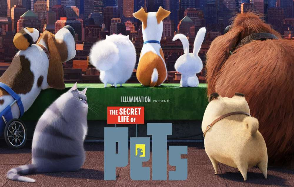 The Secret Life of Pets 2 –  The Chloe Trailer