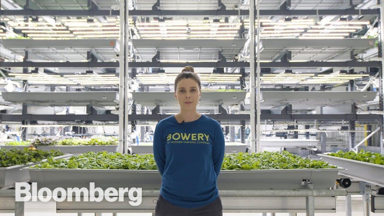 High-Tech Vertical Farmer