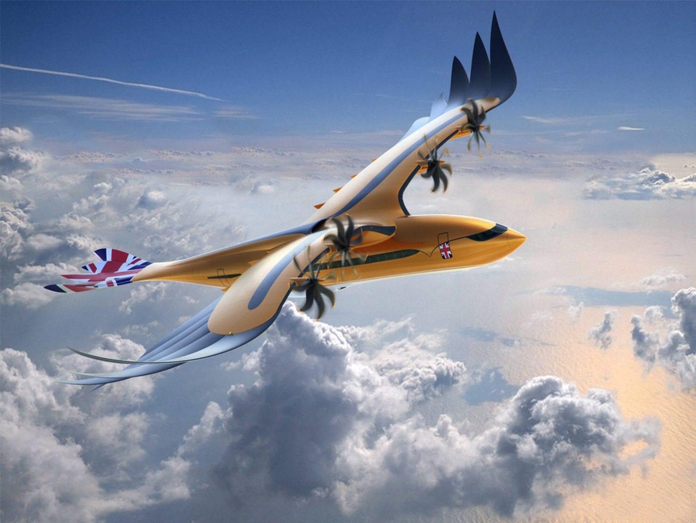 """Airbus """"Bird of Prey"""""""