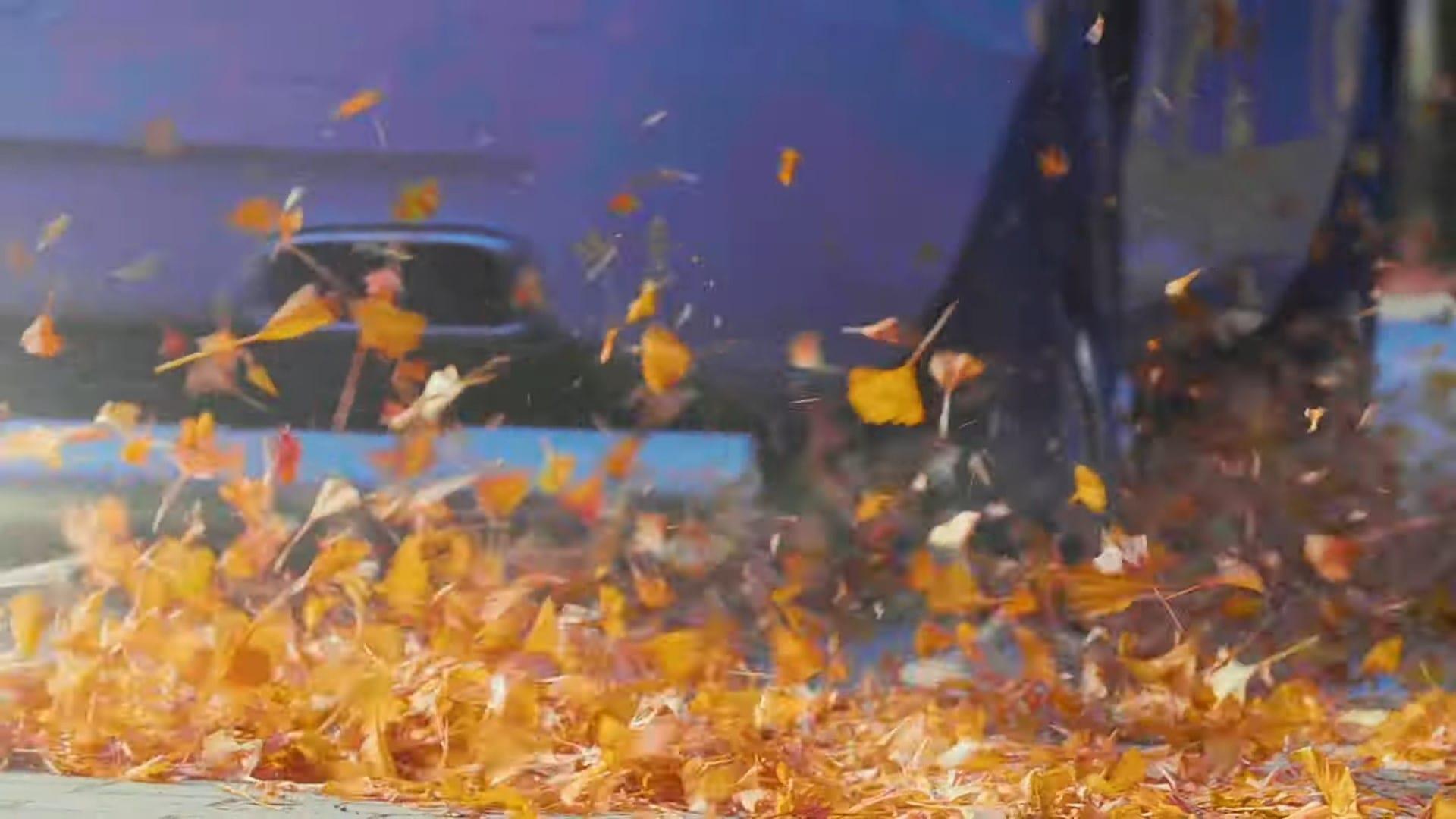 Rolls-Royce Ghost – Hunting red leaves in Japan