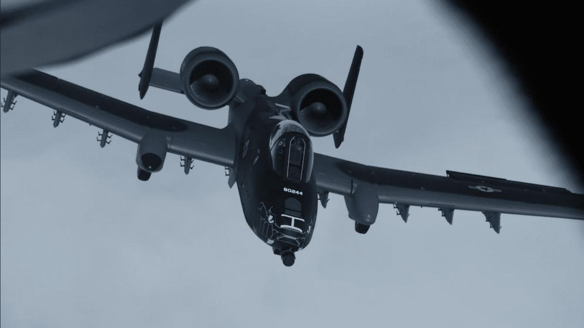 A-10 Thunderbolt II Snake Paint